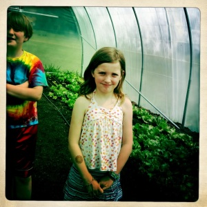 Grahamwood Gardens 2012