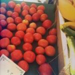 Tomato pie fixins
