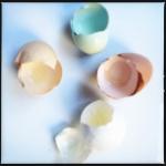 Arucana eggs