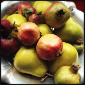 Pomegrates and pears