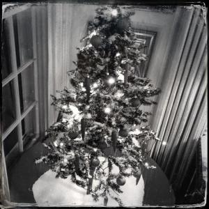 Saturnalian Christmas Tree