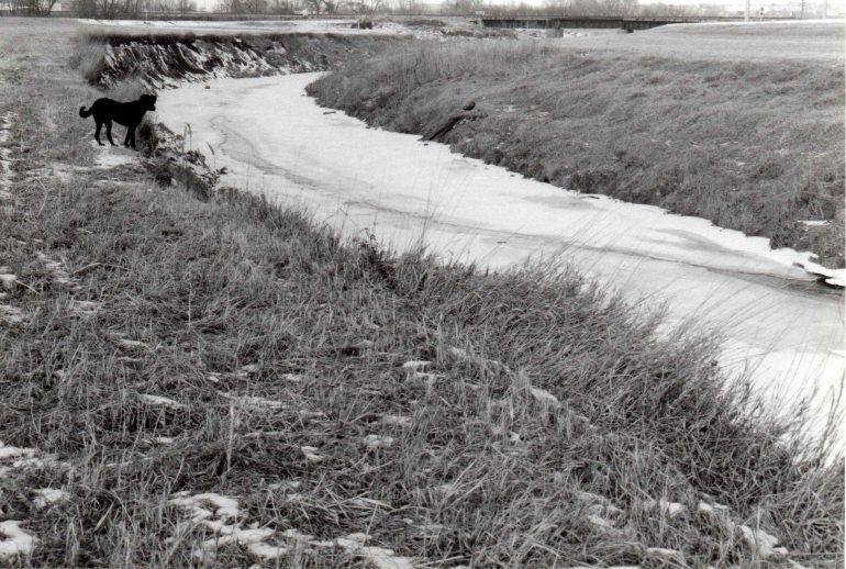 Platte River Ella
