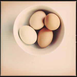 eggs april 2014