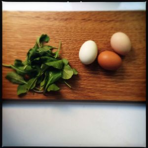 Eggs and arugula August 2014