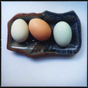 eggs september 2014