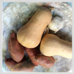 butternut squash and sweet potatoes 2014