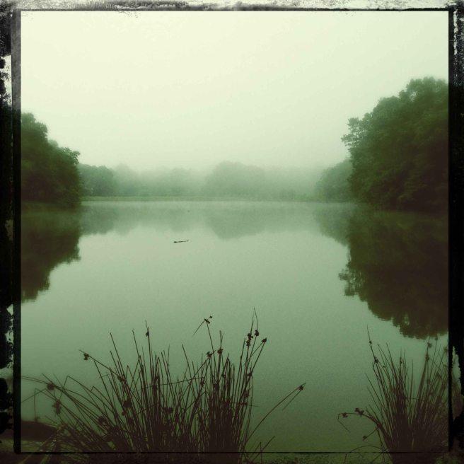 summer dawn on the lake