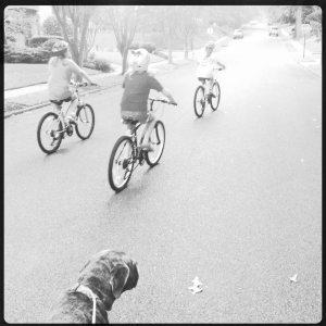 neighborhood bike brigade