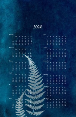 2020 wall calendar -cyanotype fern