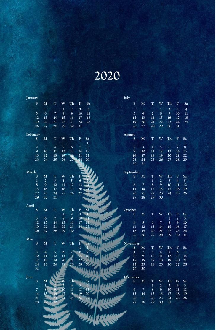 2020 wall calendar -cyanotype fern