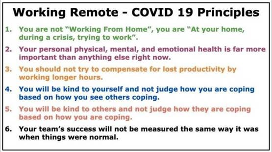 Working Remote - COVID 19 Principles